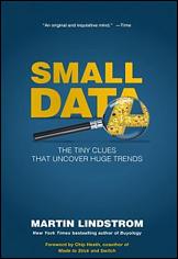 البيانات الصغرى